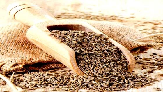जीरा के फायदे - Benefits of cumin in hindi