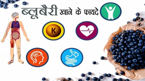 ब्लू बेरी के स्वास्थवर्धक फायदे - HEALTHY BENEFITS OF BLUEBERRY IN HINDI