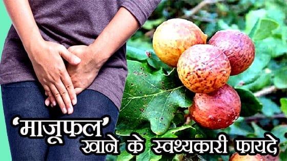 माजूफल खाने के फायदे जानकार हैरान रह जायेंगे आप - AMAZING BENEFITS OF GALL-NUT IN HINDI
