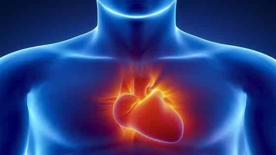 जाने हृदय व इससे जुड़े कुछ रोग व और्वेदिक उपचार के बारे में