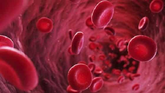 Blood Clotting Disorders In Hindi