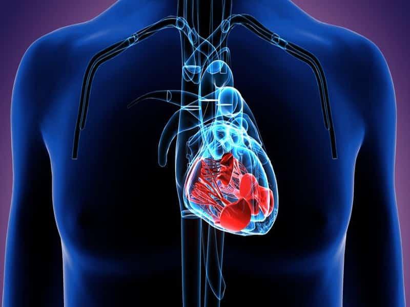 हार्ट मर्मर के कारण, लक्षण और इलाज - Heart Murmur In Hindi